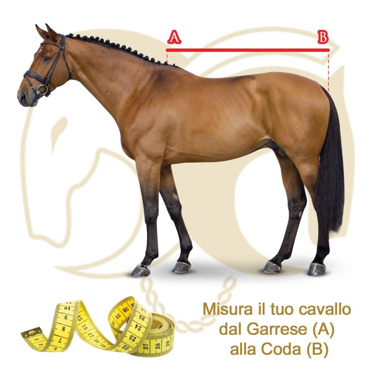 Misura taglia cavallo_tosoni selleria