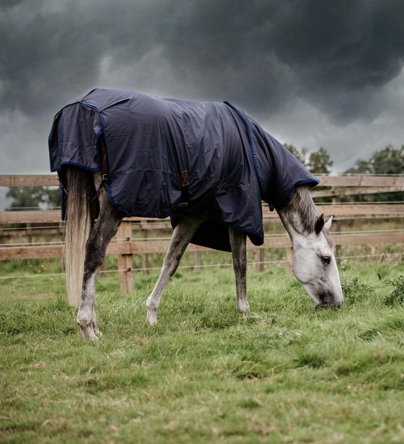 Articolo Le Coperte Per Cavalli Autunno